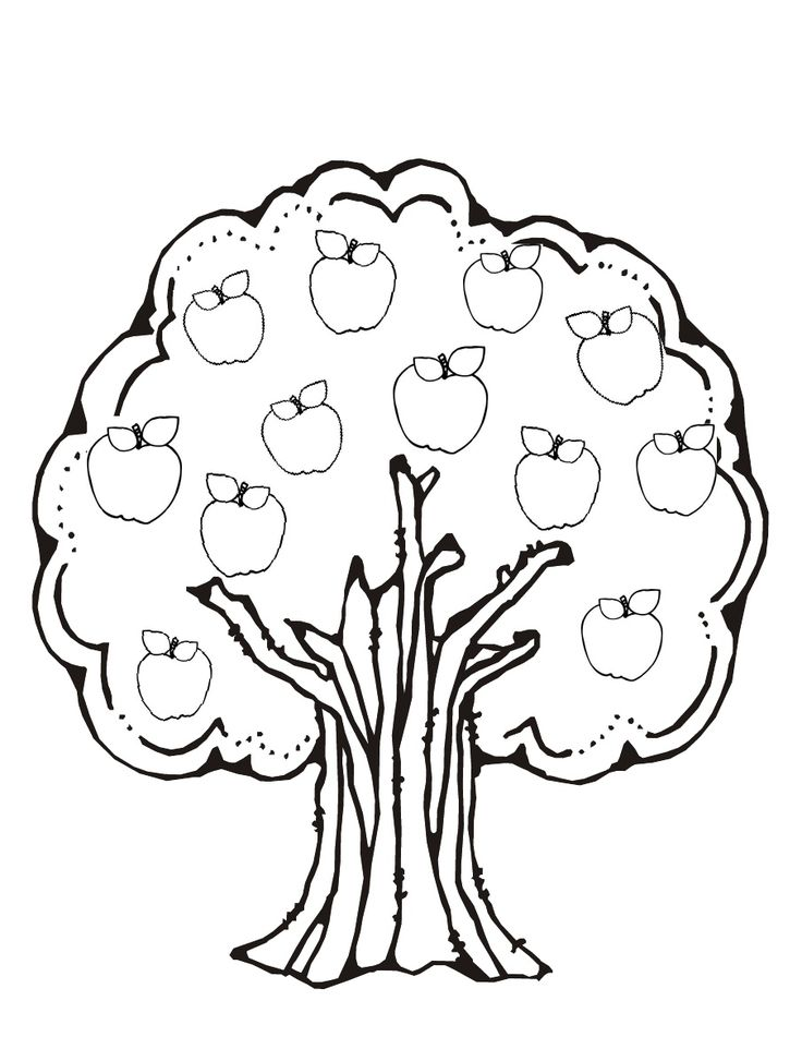 coloring page of an apple tree - 51 best fruit kleurplaten images on pinterest