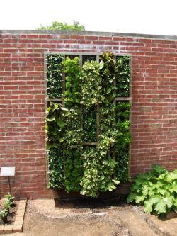 wall garden boxModern Gardens, Gardens Beds, Gardens Ideas, Small Spaces Gardens, Living Wall, Gardens Design Ideas, Vertical Gardens, Herbs Gardens, Wall Gardens