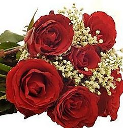 Get 50% OFF ON Bunch OF 12 Red Roses. This is one of the best choice of any one who express feelings to our well wishers. Send this beautiful bunch of 12 red roses hand bunch with your wishes.