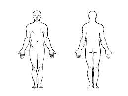 Výsledek obrázku pro lidské tělo omalovánka