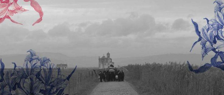 Conheçam a agência funerária que publicita os seus enterros de forma diferente.  O anúncio da Funalcoitão já é um sucesso de visualizações   #Portugal #Funalcoitão #FilhodaPub