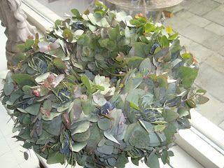 : Eucalyptuskrans