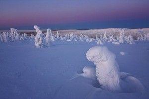 E' un inverno troppo caldo? Foto pazzesche di paesaggi congelati