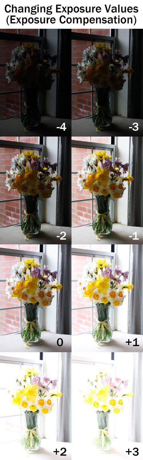 Changing Exposure Values using Exposure Compensation | Boost Your Photography