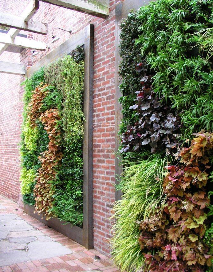 #WallGarden #Landscaping #Gardening #LivingWalls