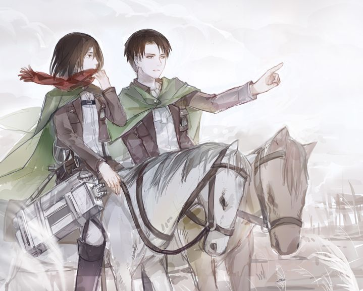 198 best images about Levi x Mikasa Ackermen on Pinterest ...