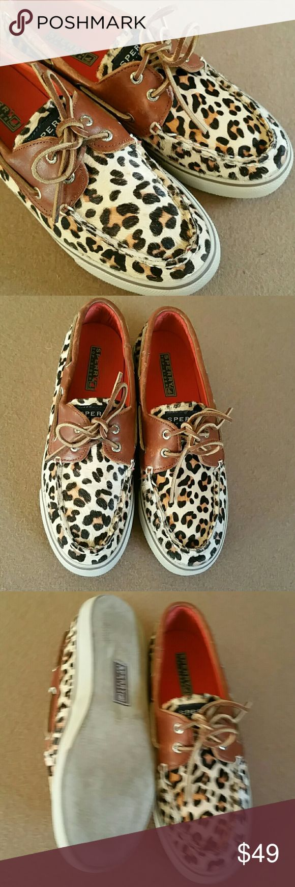 JUST IN. Calf hair Sperry TopSiders. Size 8 Very good condition. Ladies animal print calf hair with brown leather trim and laces. Size 8. No wear or flaws to note. Sperry Top-Sider Shoes Flats & Loafers