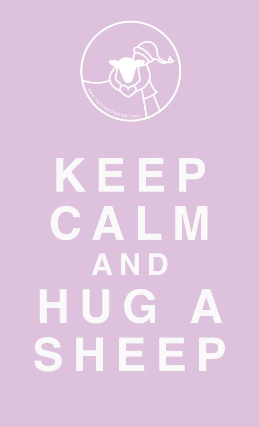 Keep calm and hug a sheep.