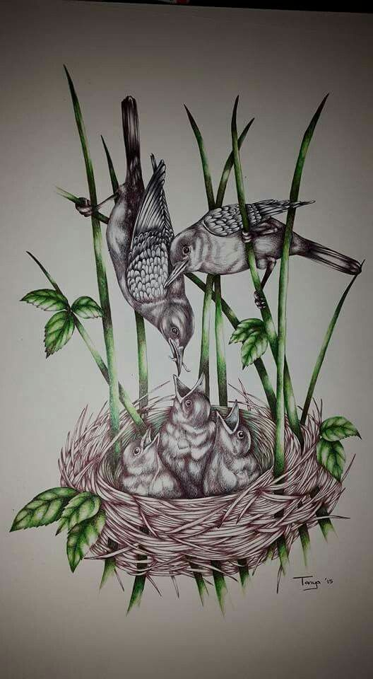 Ballpoint Pen drawing Birds art