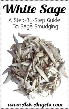 White Sage Smudging Click The O 39 Jays And Spiritual