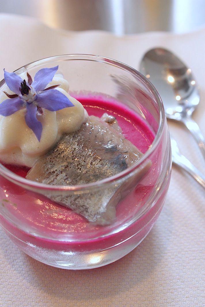 Beetroot panna cotta with herring and onion cream | Panna cotta van rode biet…