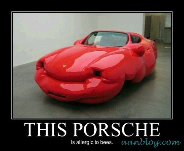 This Porsche Is Allergic To Bees Demotivational Poster