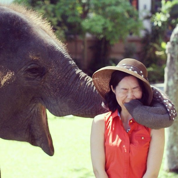 A guest with 'Lucky' the elephant. Banyan Tree Phuket, Thailand  www.islandescapes.com.au