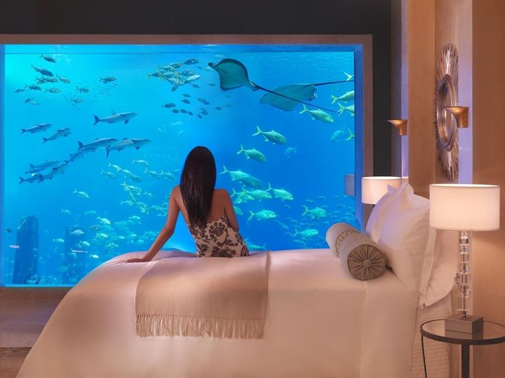 Atlantis The Palm - Hotels.com - Deals & Discounts for Hotel Reservations from Luxury Hotels to Budget Accommodations