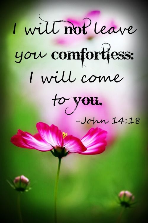 John 14:18 I will not leave you comfortless, I will come to you...Jesus Christ our Savior