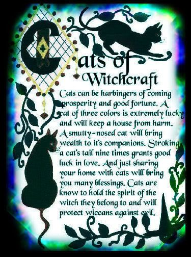 wicca Cats of Witchcraft