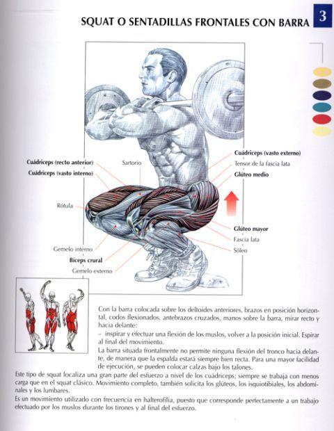 Sentadilla frontal agarre cosaco / Cuadriceps / GRUPO 1.