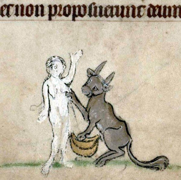Vaca ordeñando a una mujer, Libro de Horas. Flandes ca. 1300 (Cambridge, Trinity College B.11.22, fol. 118v)