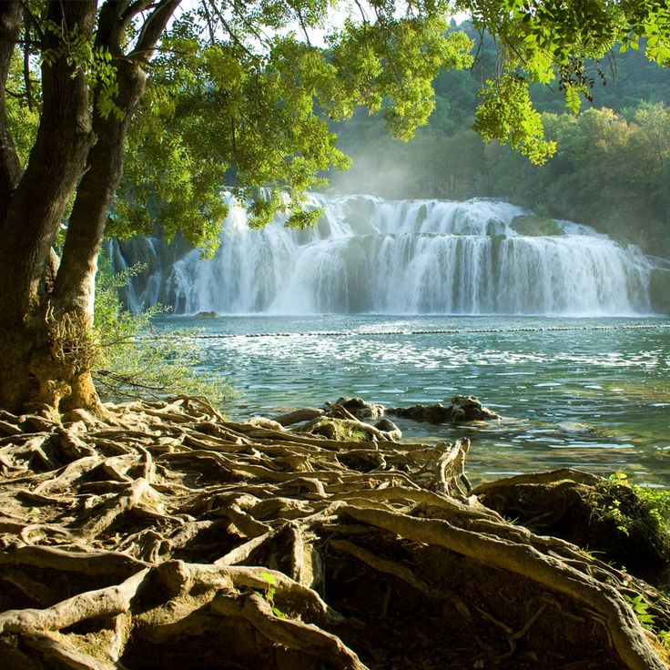 Krka National Parkis one of theCroatiannational parks, named after the riverKrkathat it encloses. It is located along the middle-lower course of theKrka Riverin centralDalmatia.
