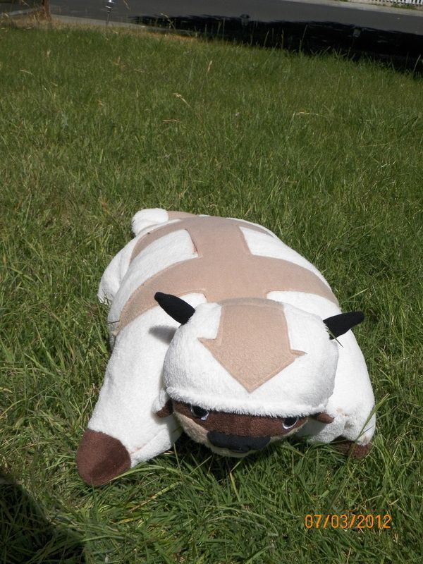 Based on Appa Pillow Pet by Rowan Pets, Pillow pets and