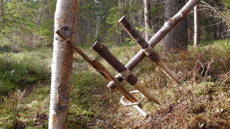 Feather Spear Trap | 9 Kickass Booby Traps to Rig Your Homestead #survivallife www.survivallife.com