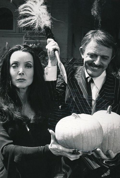 Let's carve pumpkins!!!!!!
