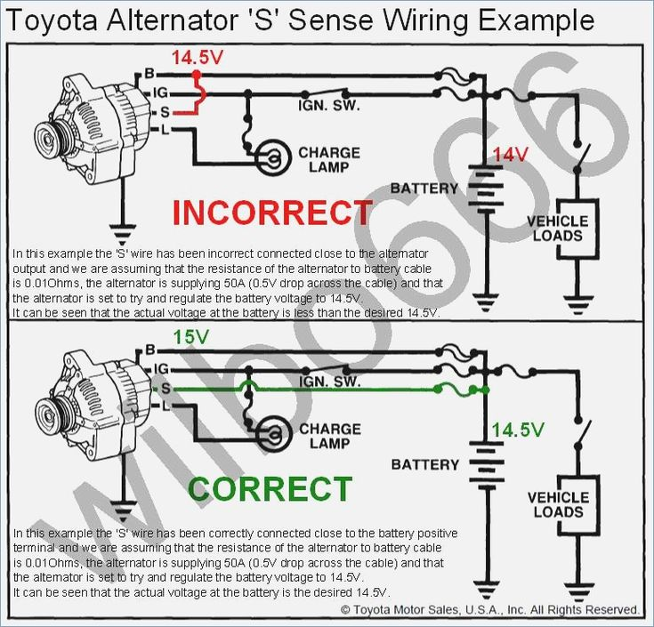 Wiring       Diagram    Toyota Alternator S Sense Wire Example Denso   Toyota  Electric boat  Mechanic humor