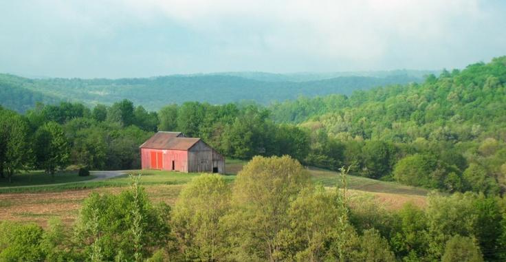 Butler County Libertarians - Home