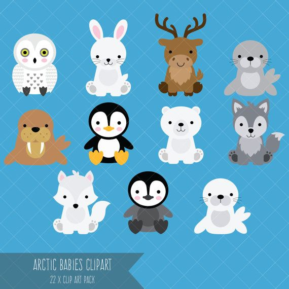 Arctic Baby Animals Clipart Polar Bear Penguin Baby