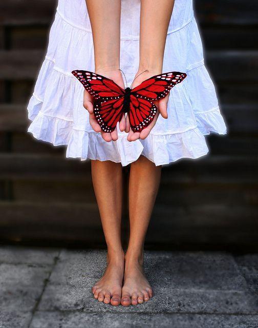 butterfly kisses by Rona Keller, via Flickr
