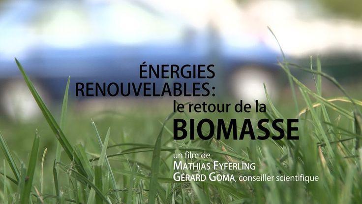 Énergies renouvelables : le retour de la biomasse