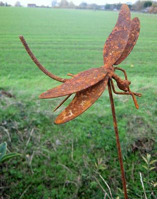 Individually sculptured rusty metal dragonfly welded to a thin steel 1 ...