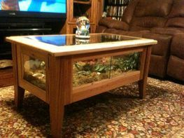 Coffee table cage. Use something other than glass for sides