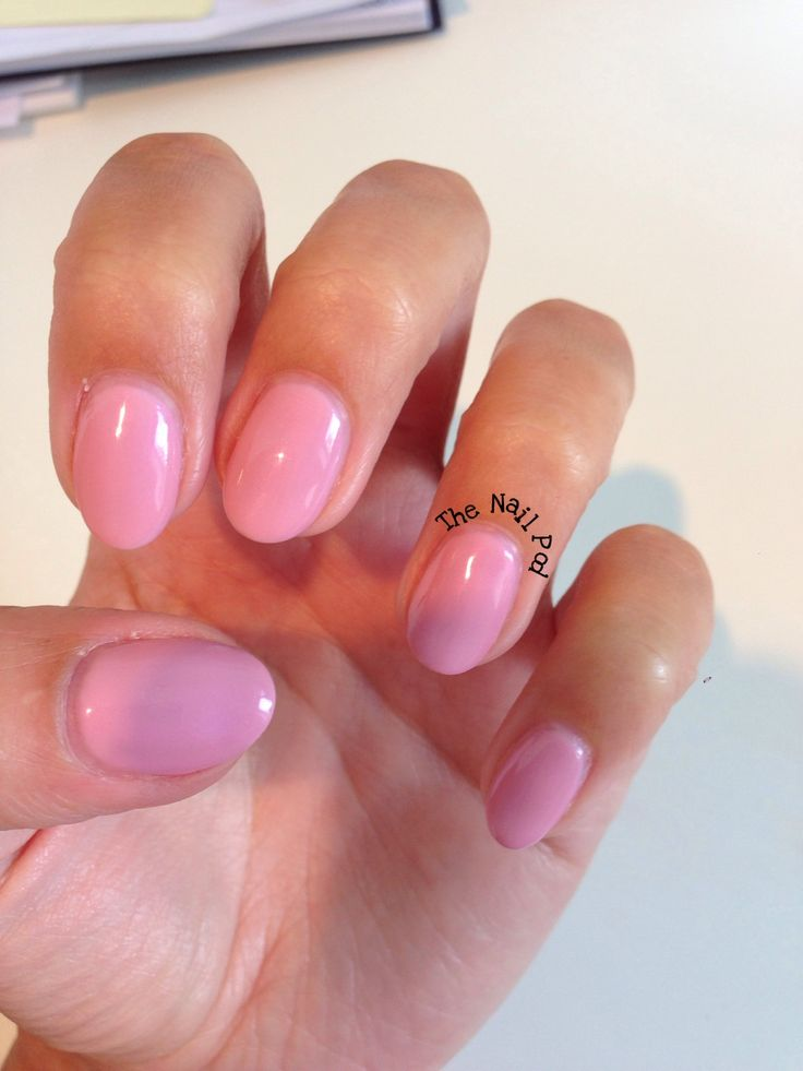"Shellac ""Blush Teddy"" i  the shape of the nails!"