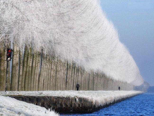 Winter landscape in Grabovica, Serbia.
