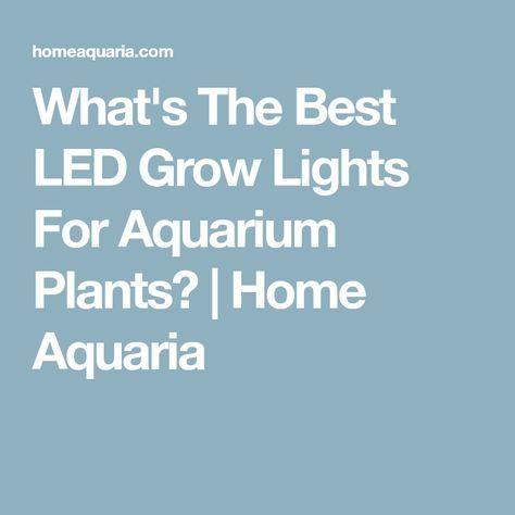 What's The Best LED Grow Lights For Aquarium Plants? | Home Aquaria
