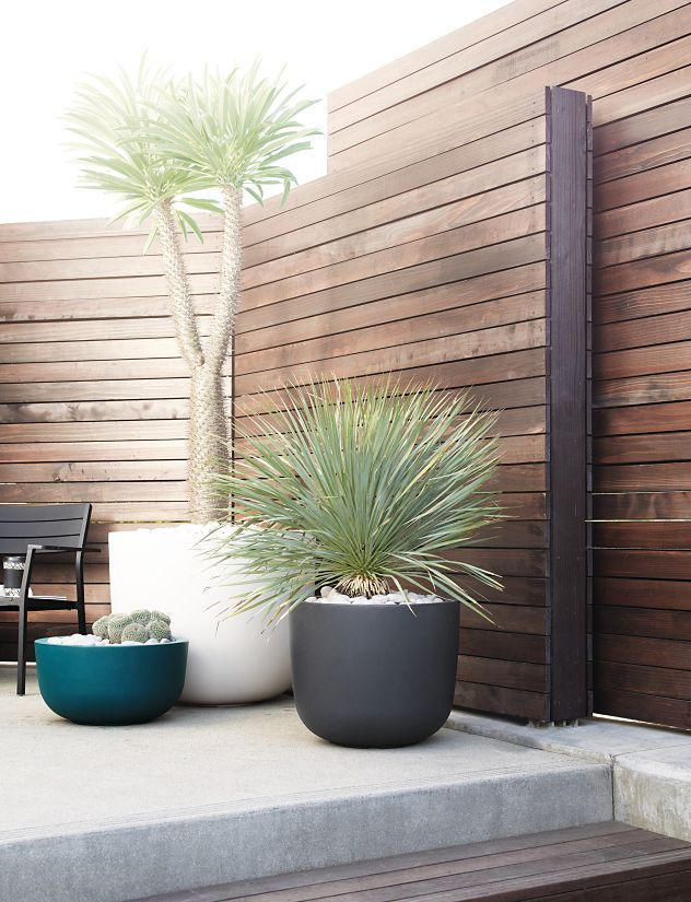 Design Within Reach Cup Planter Extra Large Terrasse 400 x 300