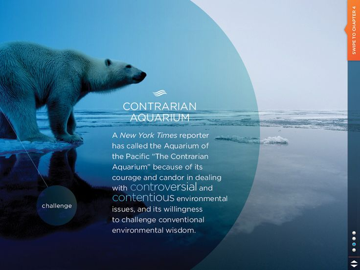 Slideshow - Presentation Layout
