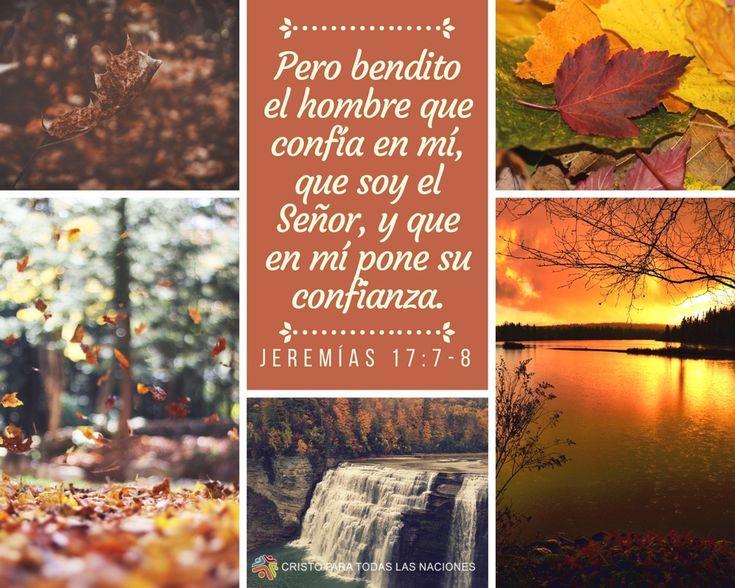 »Pero bendito el hombre que confía en mí, que soy el Señor, y que en mí pone su confianza. Ese hombre es como un árbol plantado junto a los arroyos; echa sus raíces junto a las corrientes, y no se da cuenta de cuándo llega el calor; sus hojas siempre están verdes, y en los años de sequía no se marchita ni deja de dar fruto.» Jeremías 17:7-8