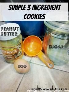 Simple 3 Ingredient Cookies #busymoms #cookies #itsthateasy