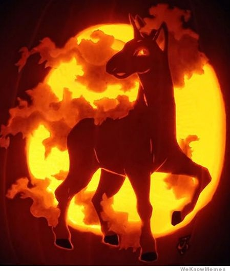 7 best pumpkins images on pinterest pumpkins fall and