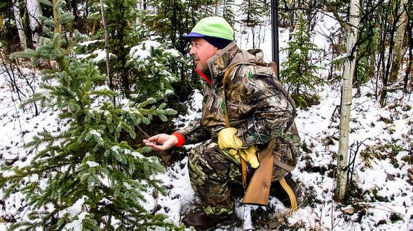 Andrew hunting for spruce chicken, a type of grouse that's native to Copper River Valley.
