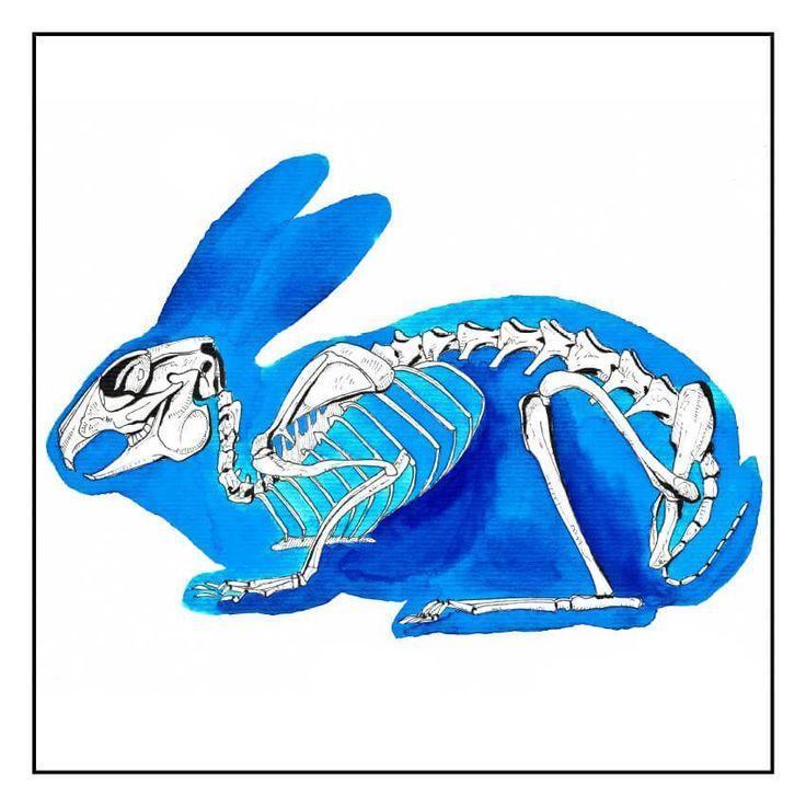 Le lapin bleu - Louis Vairel