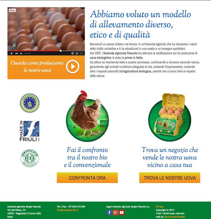 website copy, leaflet customer: uova pascolo