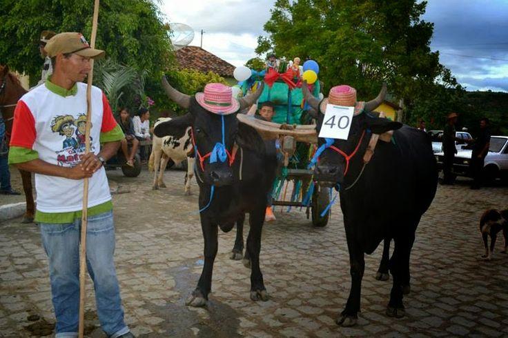 Festas de Carros de Boi: Desfile de Carros de Boi e Casamento Matuto na Vil...