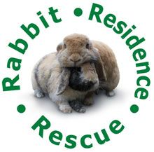 The 'Rabbit Residence Rescue' in Hertfordshire does so much for unwanted rabbits. Please show your support!