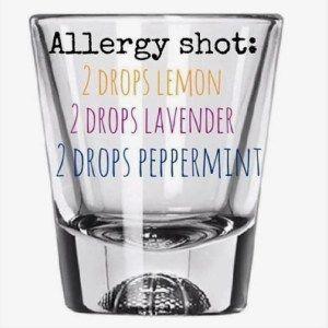 essential oils for seasonal allergies …