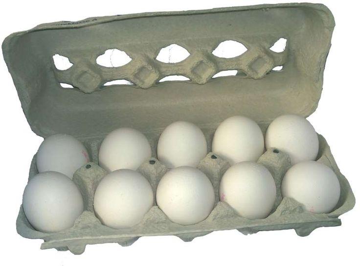 C'est en pharmacie qu'on les paiera moins chers : la douzaine d'œufs coûte régulièrement moins de tr... - Photo Pixabay
