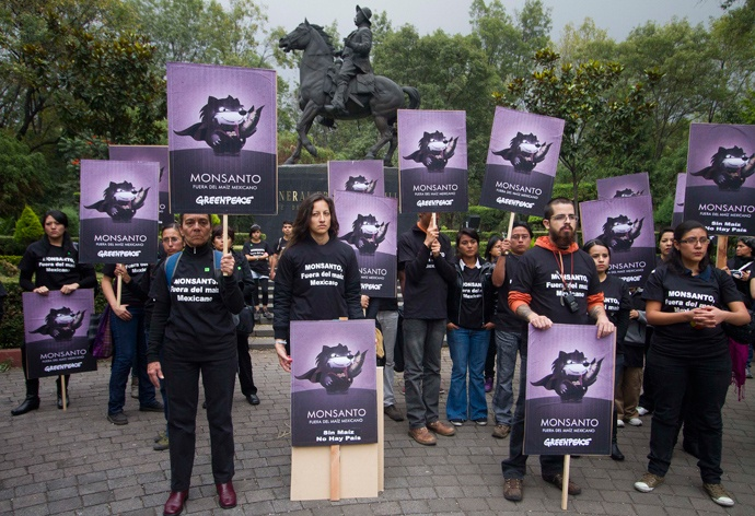 200,000 in 40 countries: Activists of the global environmental watchdog Greenpeace demonstrate against US biotech giant Monsanto and the commercial sowing of transgenic corn, at Parque de los Venados in Mexico City (AFP Photo)
