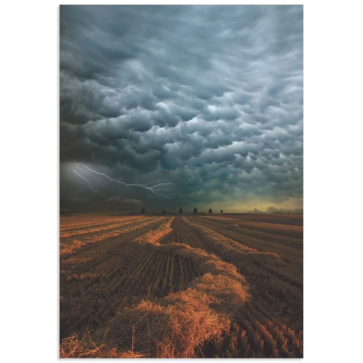 Mammatus Clouds is a striking wall art based on the talented photography, artistic editing, and creative enhancements of emerging artist Franz Schumacher. The storm pictures is a high resolution gicle